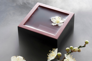 升酒と梅の花の写真素材 [FYI01389277]