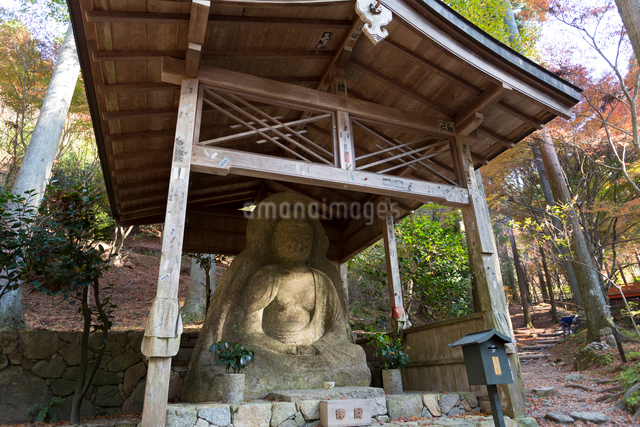 三千院の石仏の写真素材 [FYI01389520]