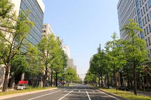 御堂筋の街並みとイチョウの新緑の写真素材 [FYI01390808]