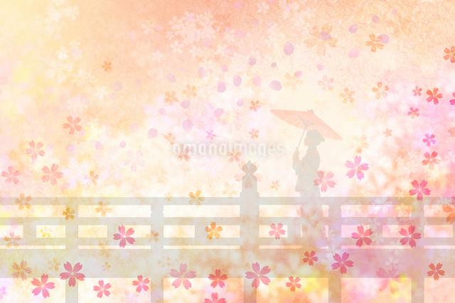 桜と和服姿の女性の写真素材 [FYI01391250]