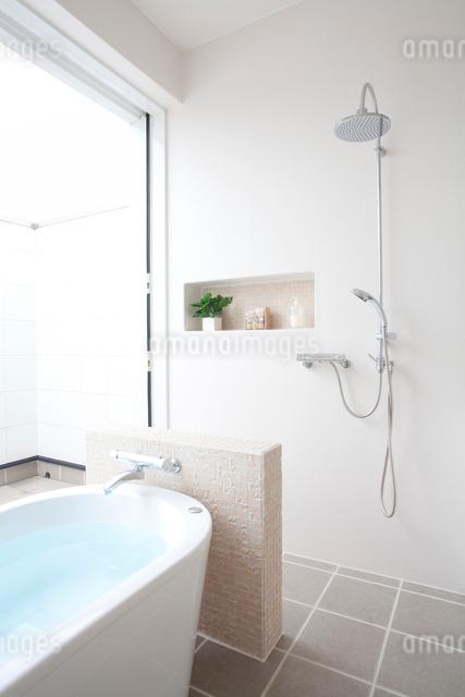 バスルームの写真素材 [FYI01391352]