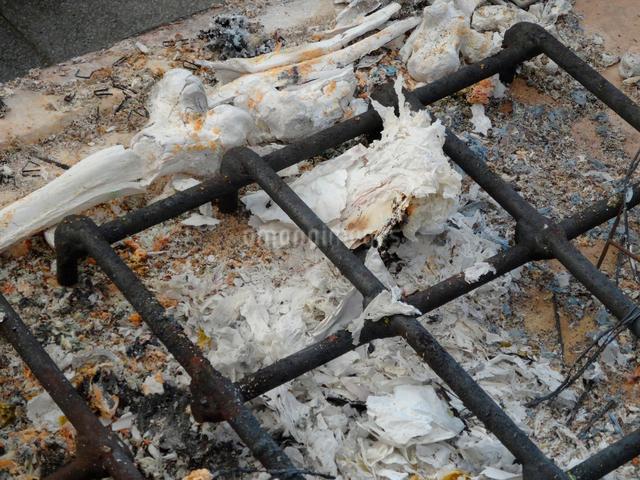 火葬後の遺骨の写真素材 [FYI01391637]