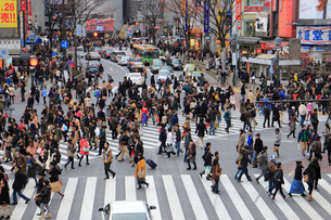 渋谷スクランブル交差点の写真素材 [FYI01393995]