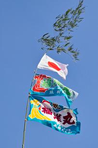 大漁旗の写真素材 [FYI01394131]
