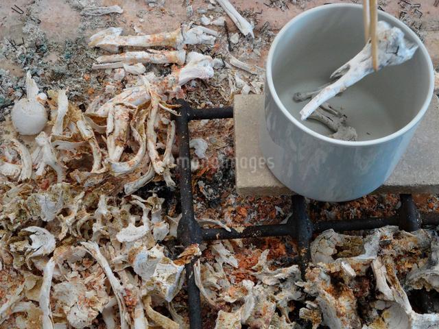 遺骨の骨上げの写真素材 [FYI01395688]