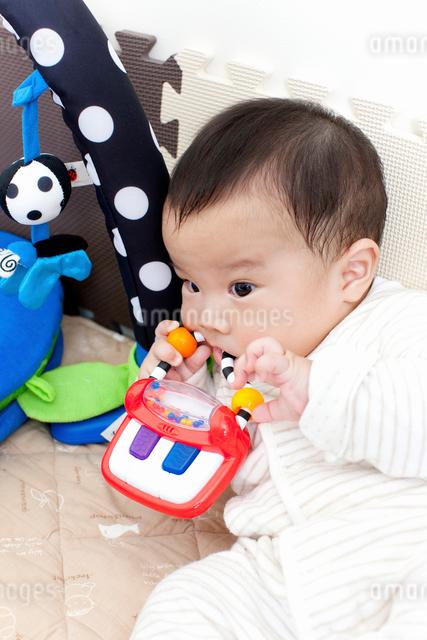 赤ちゃんの写真素材 [FYI01395711]