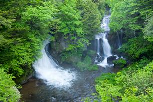竜頭ノ滝の写真素材 [FYI01398332]