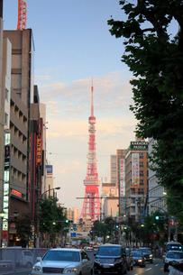 東京タワーと六本木の夜景の写真素材 [FYI01399089]