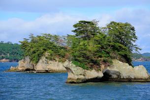 日本三景の松島の写真素材 [FYI01399683]