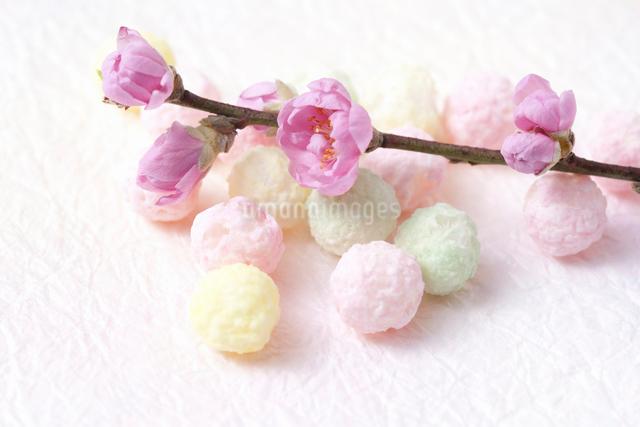 桃の花と雛あられの写真素材 [FYI01400661]