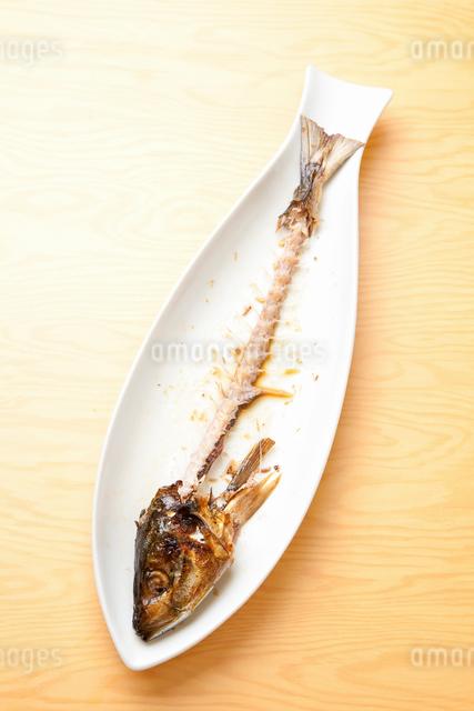 奇麗に食された魚の写真素材 [FYI01400898]