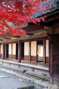 合掌造りの家と紅葉の写真素材 [FYI01401184]