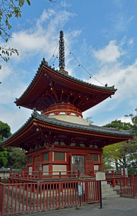 川越大師喜多院 多宝塔の写真素材 [FYI01401633]
