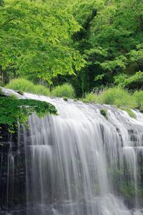 宮島峡の二の滝の写真素材 [FYI01402502]