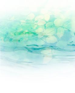 葉と水 CGのイラスト素材 [FYI01402646]