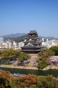 桜咲く広島城の写真素材 [FYI01403265]