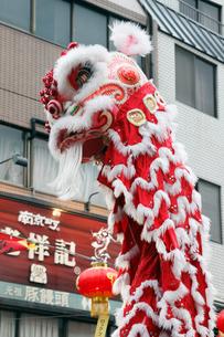 神戸南京町の春節祭の写真素材 [FYI01403562]