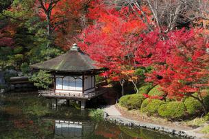 和歌山城の紅葉渓庭園の写真素材 [FYI01403850]