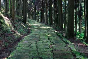 龍門司坂の石畳の写真素材 [FYI01403972]