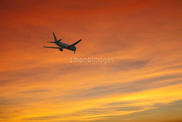 夕焼けと飛行機の写真素材 [FYI01404508]