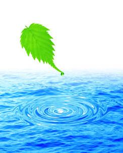 水面と葉のイラスト素材 [FYI01404546]