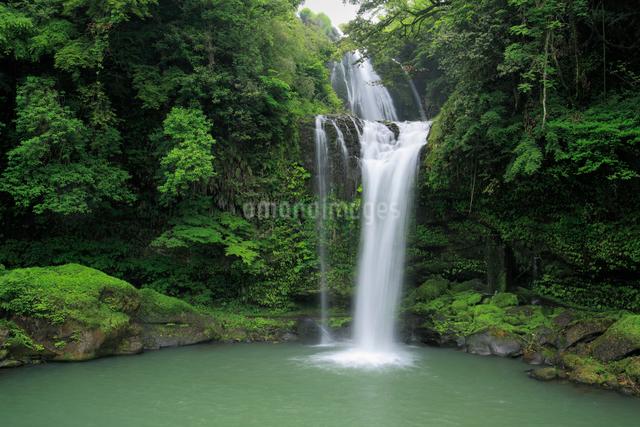 慈恩の滝の写真素材 [FYI01404564]