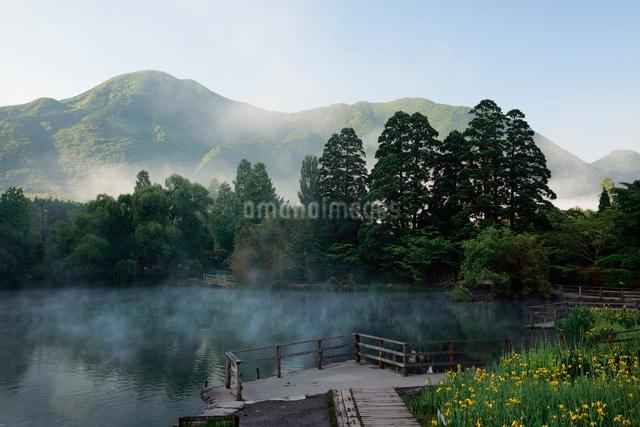 朝の金鱗湖の写真素材 [FYI01404745]