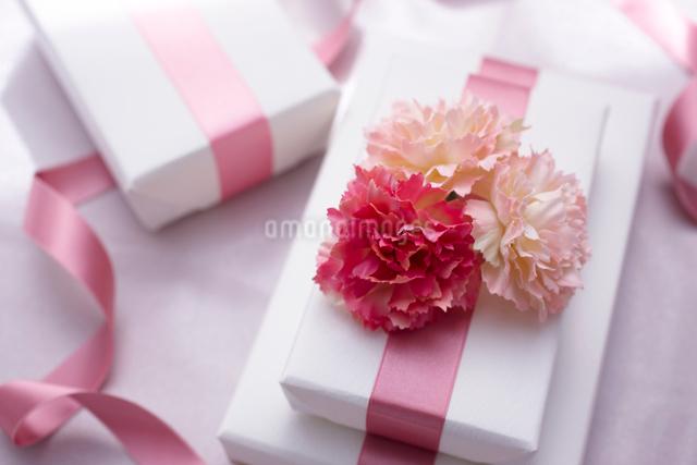 母の日のプレゼントの写真素材 [FYI01405065]