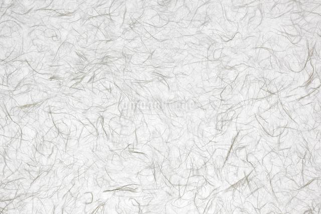 和紙の写真素材 [FYI01405185]
