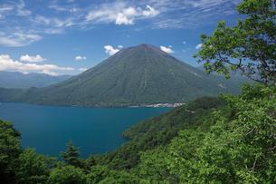 新緑の中禅寺湖と男体山の写真素材 [FYI01405397]