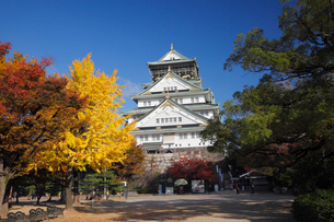 紅葉と大阪城の写真素材 [FYI01405436]