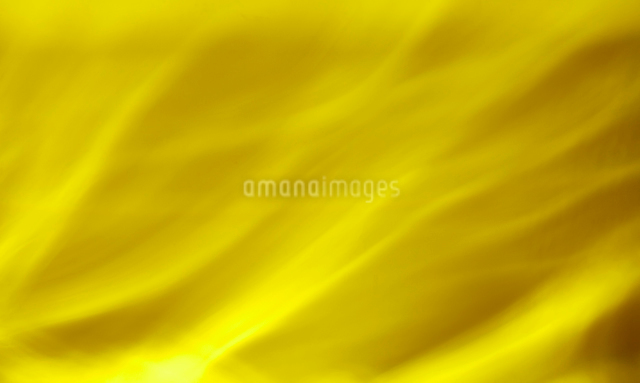 キラキラな金の背景素材の写真素材 [FYI01405569]