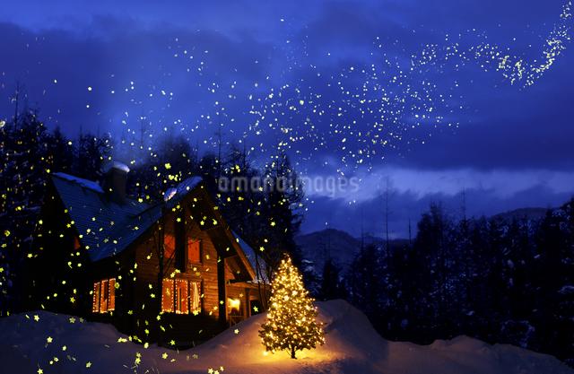 宙を舞う星とクリスマスツリーのある家の風景の写真素材 [FYI01405579]