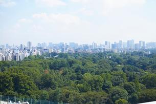 都市風景と青空の写真素材 [FYI01405834]