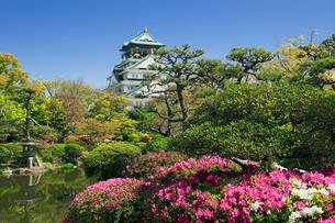 ツツジの咲く大阪城の写真素材 [FYI01406095]