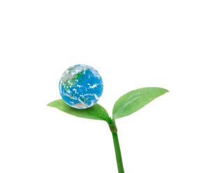 地球のイメージのイラスト素材 [FYI01406106]