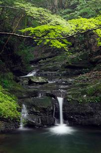 犬鳴山の塔の滝の写真素材 [FYI01406187]