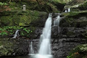 犬鳴山の両界の滝の写真素材 [FYI01406892]