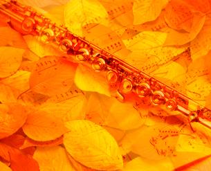 落ち葉とフルートの写真素材 [FYI01406910]