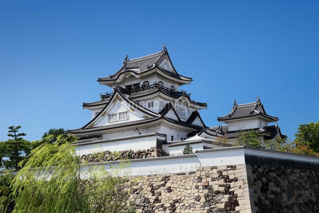 岸和田城の写真素材 [FYI01407028]