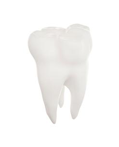歯の写真素材 [FYI01407152]