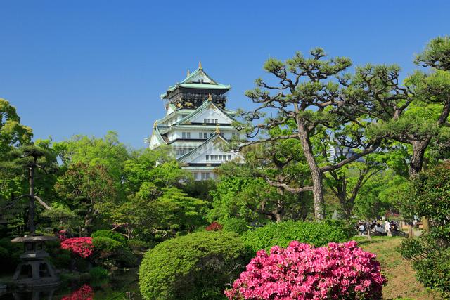 ツツジの咲く大阪城の写真素材 [FYI01407420]