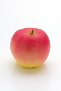 りんごの写真素材 [FYI01407469]