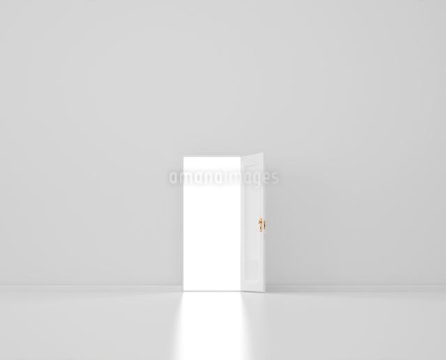 ドアの写真素材 [FYI01407512]
