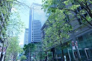 ビジネス街の風景の写真素材 [FYI01407611]