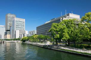 新緑の土佐堀川と大阪市役所の写真素材 [FYI01407960]