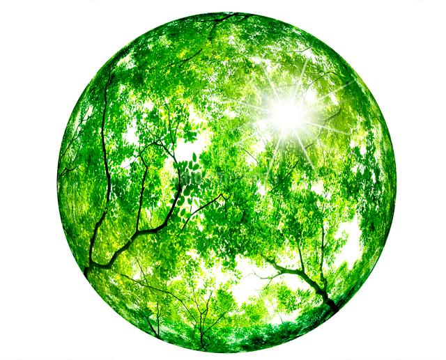 新緑の球の写真素材 [FYI01408086]