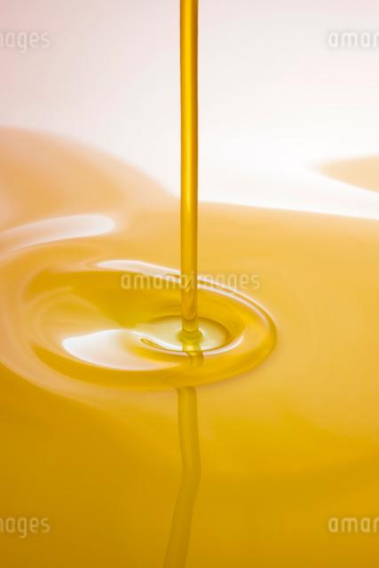 ごま油の写真素材 [FYI01408113]
