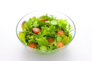 野菜サラダの写真素材 [FYI01408592]