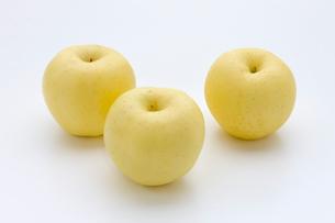 りんごの写真素材 [FYI01409052]